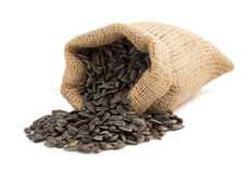 Sunflower seeds in bag on white Stock Images