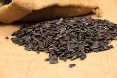 Sunflower seeds in bag Royalty Free Stock Image