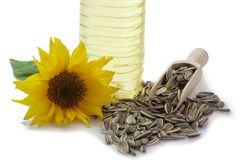 Sunflower Seeds with Blossom and Oil Royalty Free Stock Photo