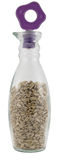 Sunflower seeds in a bottle Stock Photos