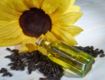 Sunflower seeds and a bottle. Sunflower, sunflower seeds and a bottle of sunflower oil Royalty Free Stock Image