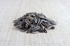 Sunflower seeds on canvas. Royalty Free Stock Photos