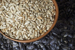 Sunflower seeds in clay Stock Images