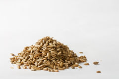 Sunflower Seeds. Close up of hulled sunflower seeds  on white background Royalty Free Stock Photos