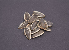 Sunflower seeds in close-up Royalty Free Stock Photography