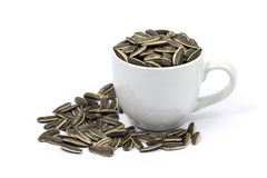 Sunflower seeds in cup with white background Stock Photography
