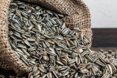Sunflower Seeds in Gunny Bag Stock Photo