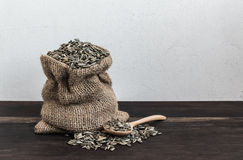 Sunflower Seeds in Gunny Bag with spoonful Royalty Free Stock Image