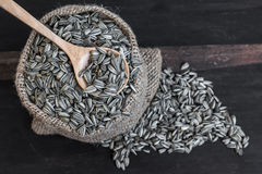 Sunflower Seeds in Gunny Bag with spoonful Royalty Free Stock Images