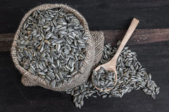Sunflower Seeds in Gunny Bag with spoonful Stock Image