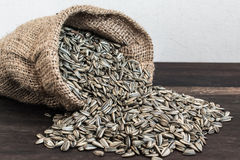Sunflower Seeds in Gunny Bag Stock Photos