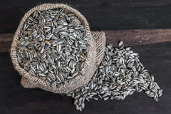 Sunflower Seeds in Gunny Bag Royalty Free Stock Photos