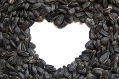 Sunflower seeds - heart shape. Isolated Royalty Free Stock Images