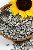 Sunflower Seeds in the Hull Stock Images
