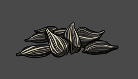 Sunflower seeds, illustration Royalty Free Stock Images