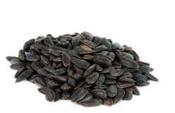 Sunflower seeds isolated Royalty Free Stock Images