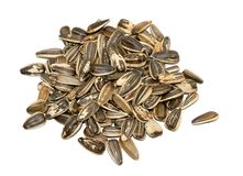 Sunflower Seeds. Isolated Pile of Sunflower Seeds Royalty Free Stock Image
