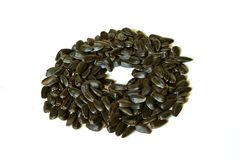 Sunflower seeds isolated stock photography