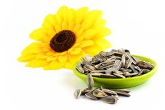 Sunflower seeds isolated Stock Images