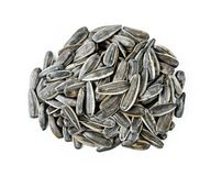 Sunflower seeds isolated on white. Background royalty free stock images