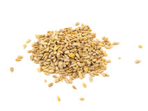 Sunflower seeds isolated on the white background.  Royalty Free Stock Photography