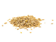 Sunflower seeds isolated on the white background.  Royalty Free Stock Images