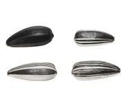 Sunflower seeds isolated on white Stock Images