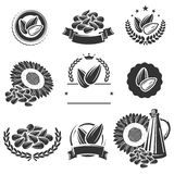 Sunflower seeds label and elements set. Vector Stock Photography