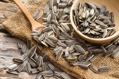 Sunflower seeds on linen sack Stock Photography