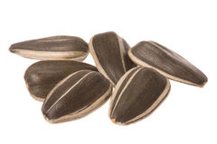 Sunflower Seeds Macro Isolated Stock Photos
