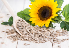 Sunflower Seeds (Macro Shot) Royalty Free Stock Images
