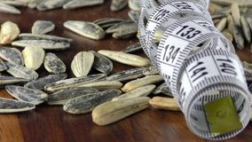 Sunflower Seeds and Measurement Macro View. Video stock video