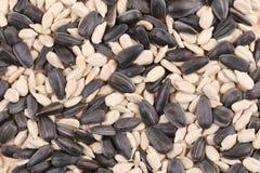 Sunflower seeds mix. Royalty Free Stock Photos