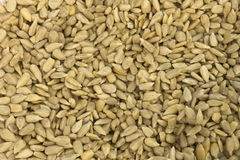 Sunflower Seeds. This is a photograph of hulled Sunflower Seeds Stock Photography