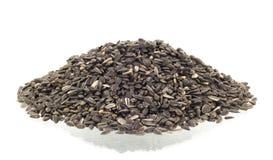 Sunflower seeds pile against white background Stock Image