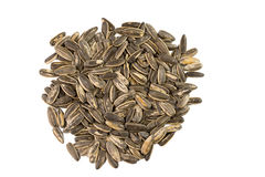 Sunflower seeds pile against white background Royalty Free Stock Photography