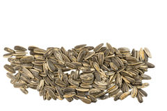 Sunflower seeds pile against white background Royalty Free Stock Images