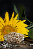 Sunflower Seeds 2 Stock Photo