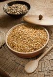 Sunflower seeds roasted in tamari Royalty Free Stock Photos