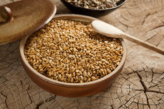 Sunflower seeds roasted in tamari. On a rustic wooden surface Stock Photography