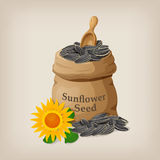 Sunflower seeds in a sack and spoon. Royalty Free Stock Photography
