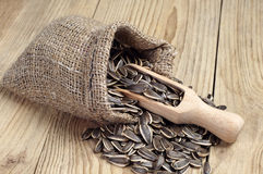 Sunflower seeds in a sack Royalty Free Stock Photo