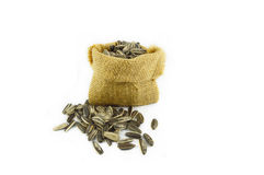 Sunflower seeds in sack Royalty Free Stock Photo