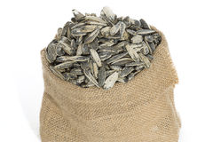 Sunflower seeds in sack. On white background stock photos