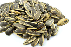 Sunflower Seeds Royalty Free Stock Photos