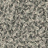 Sunflower seeds seamless background Royalty Free Stock Photo