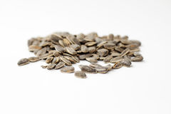 Sunflower seeds in shell isolated Stock Images
