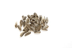 Sunflower seeds. Some sunflower seeds on white background Stock Image