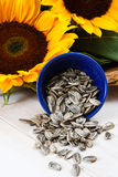 Sunflower Seeds Spilling From a Blue Bowl Stock Photography