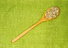 Sunflower seeds in a spoon on a green leaf. Spices Stock Photography